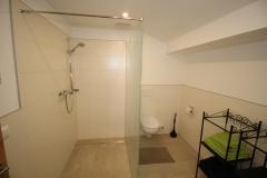 waldesruh-ausblick-bad-mit-dusche