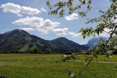 waldesruh-ausblick-unterberg